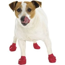 doginboots-thumb-250x250