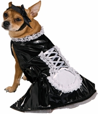 french-maid-dog